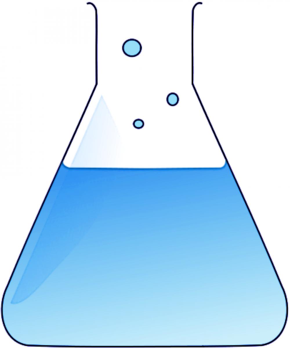 La Chimica e la Società
