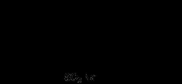 la molecola di tensioattivo prodotta effettivamente nelle condizioni di sintesi acida; cit. di S. Mammi