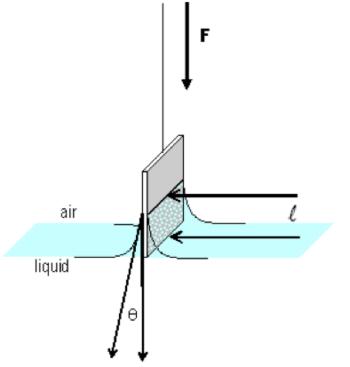 la situazione fisica del menisco nell'esperimento di W.