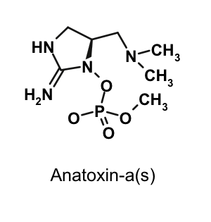 anatoxyn-a(s)