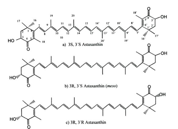 astaxantina2