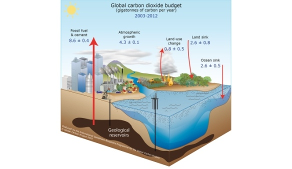 fig_35_global_carbon_cycle