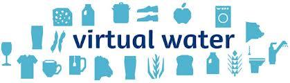 virtualwater