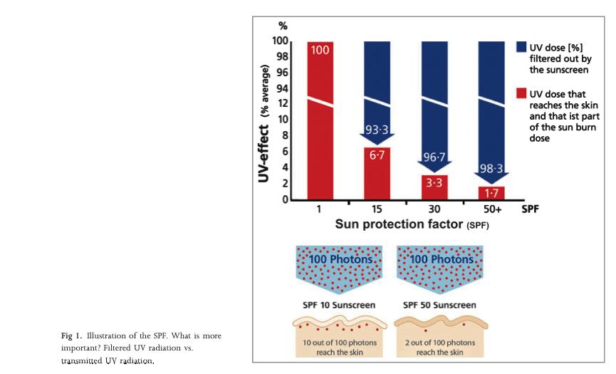 019cbc4d4db3c Creme solari  a che servono e da dove vengono    La Chimica e la Società
