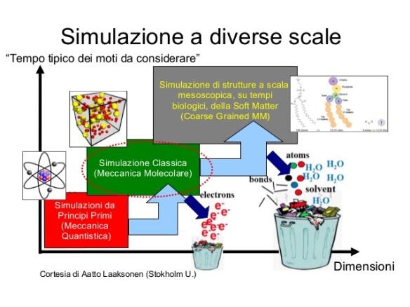 modellistica-molecolare-e-applicazioni-alla-sclerosi-multipla-8-638
