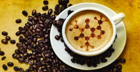 caffe11