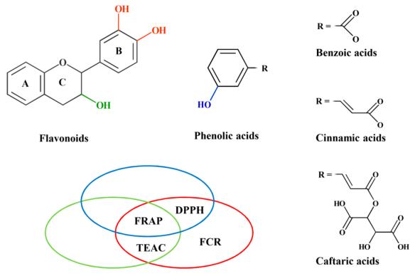 molecules-21-00208-g002-1024