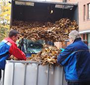 autumn-leaves-2-1