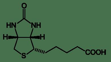 biotin_structure_ja