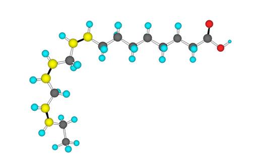 fig-3-struttura-spaziale-di-ala